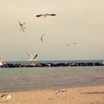 FOTO N.3